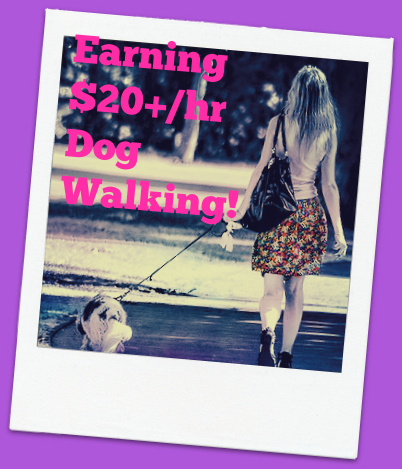walk to earn money method 7 kids can walk dogs 20 or more per hour how 964